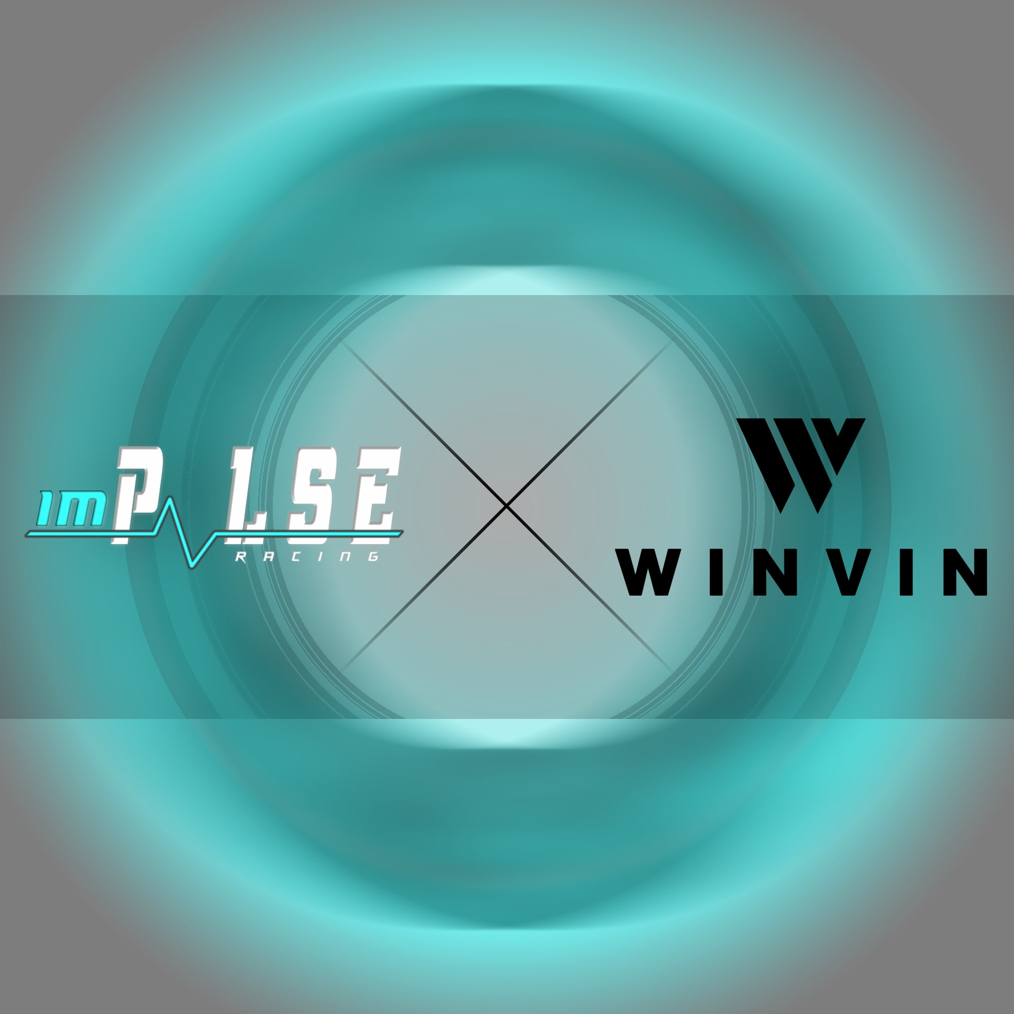 New Partner Winvin